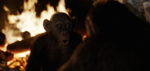 Apes talk in WAR FOR THE PLANET OF THE APES